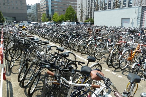 Bikes, we have lots and lots of bikes
